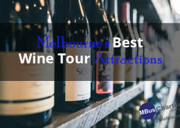 Escape from the hustle and bustle in Melbourne CBD and go straight to scenic vineyards that blanket the city! Explore all the five regions outside Melbourne that offer special blends and twists unique to their climates. Each region has something special to offer complete with tours that will redefine what you know about wines and vineyards. To make the most out of these wine experiences, consider bus charter in Melbourne. Understanding Wine Regions in Melbourne Pinot noir, shiraz and chardonnay varieties dominate the four regions that make up Melbourne's wine belt. The four regions, Yarra Valley, Geelong, Macedon and Mornington Peninsula, are known for producing some of the most popular wine brands in the world. The unique geographical features and climate that define these regions combine to create unique types of wine that are distinct as the wineries behind them. Yarra Valley From rustic tin sheds tucked inside vines to architectural statements that have managed to stand the test of time over decades, Yarra Valley is simply a haven. It boasts of a scintillating range of cellar doors, lush greenery and juicy grapes all reflecting the diversity of styles in this one of a kind cool climate region which is just a stone's throw from Melbourne. Experience new vintage cool climate masterpieces from more than 70 wineries around Healesville, which is one of Yarra Valley's most popular towns. Head further north towards the picturesque village of Marysville where other wineries wait for you. Further north towards other villages lie beautiful vineyards and wineries tucked into the charming hill country around Hurstbridge, Kangaroo Ground and Nillumbik. Your tours will be incomplete without visiting Zonzo Estate. It is surrounded by 45 acres of vines, luscious lawns and flowery fields that blend to make picturesque views. The traditional Italian custom of shared meals around a table becomes alive here. Some of the estate's popular wines include Cabernet Sauvignon and Rose. Mo